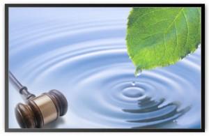 environmental326x212