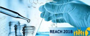 reach-echa